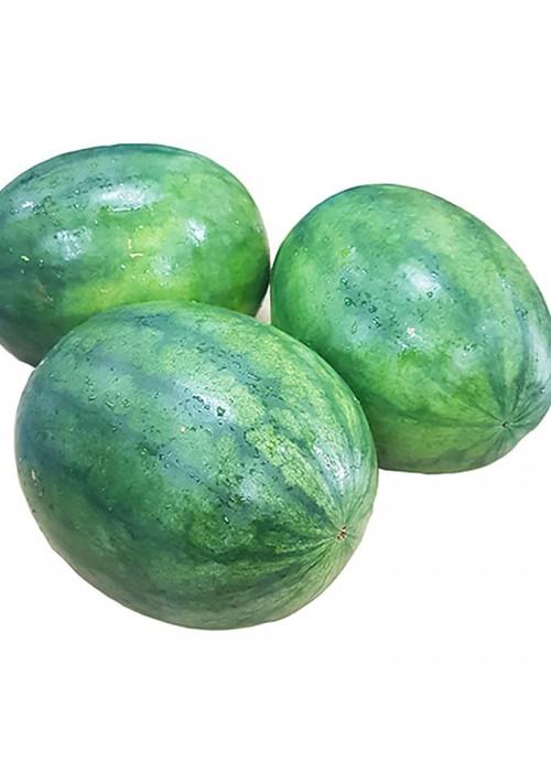 water melon eng