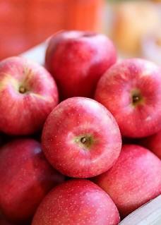 사과선물세트 이미지(영)