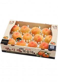 햇사레 황도 박스 영